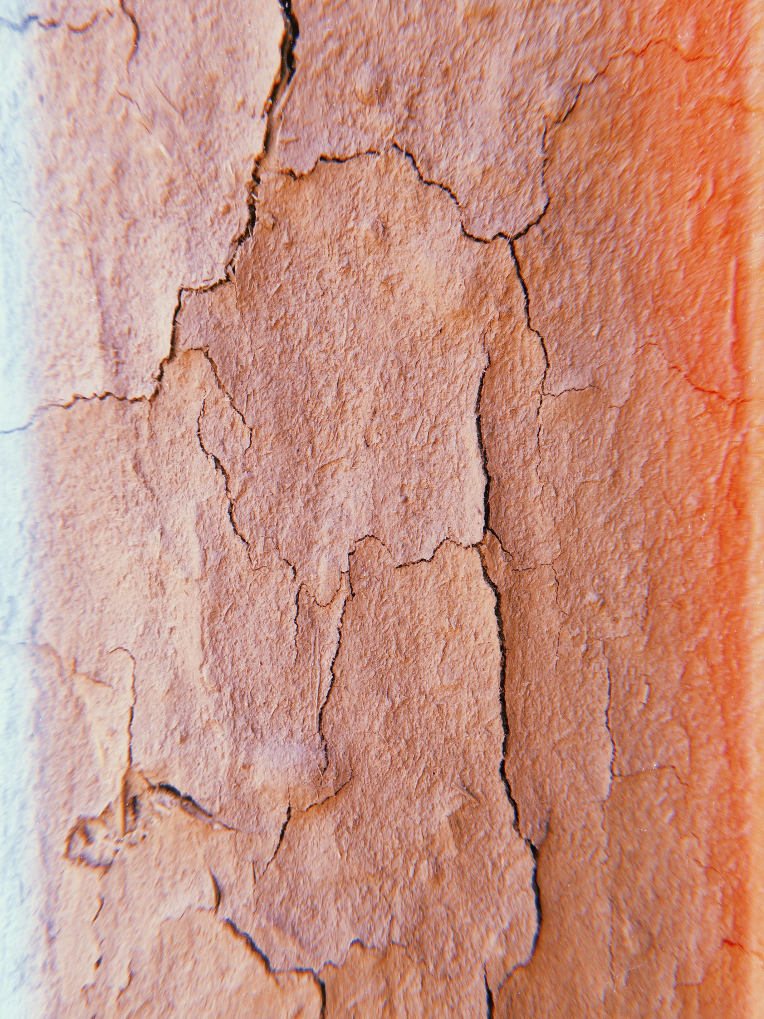 broken-crack-cracked from fancycrave on pexels.com